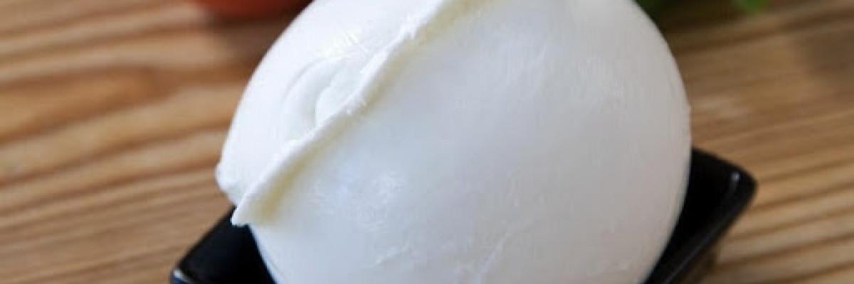 Туровский молочный комбинат